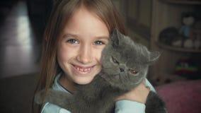 La muchacha bonita juega con un gato gris en casa Gato exótico del shorthair almacen de metraje de vídeo