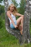 La muchacha bonita se sienta en abedul. Foto de archivo