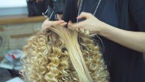 La muchacha cabelluda hermosa, rubia con el pelo largo, peluquero hace rizos africanos en un salón de belleza Cuidado del cabello metrajes