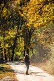 La muchacha camina en parque hermoso del otoño Imágenes de archivo libres de regalías
