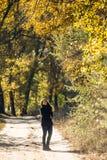 La muchacha camina en parque hermoso del otoño Fotografía de archivo