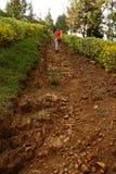 La muchacha camina encima de Rocky Path escarpado Imagen de archivo