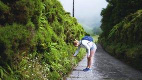La muchacha camina a lo largo de un camino pintoresco en el bosque en niebla pesada metrajes