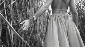 La muchacha camina a través de las cañas de la cámara y toca la hierba almacen de metraje de vídeo