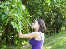 La muchacha come las moras del árbol imagen de archivo libre de regalías