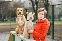 La muchacha con dos perros en el parque Imágenes de archivo libres de regalías