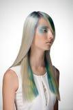 La muchacha con el colorante de pelo profesional y creativos componen en estilo del pavo real Fotos de archivo libres de regalías