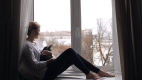 La muchacha con el gato británico se sienta almacen de metraje de vídeo