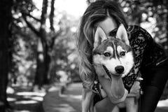 La muchacha con el husky siberiano Juegos deliciosos de la muchacha con un husky siberiano Muchacha que camina con un perro de bú foto de archivo libre de regalías