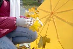 La muchacha con el paraguas recoge follaje del otoño Fotos de archivo