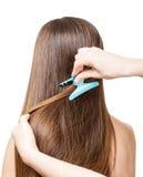La muchacha con el pelo marrón largo hace el pelo Aislado en blanco Fotos de archivo libres de regalías
