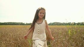 La muchacha con el pelo oscuro largo La muchacha corre entrega los oídos del trigo La muchacha preciosa camina en el campo ruso L almacen de metraje de vídeo