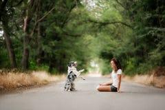 La muchacha con el perro se sienta en el camino en bosque el perro hace un truco fotografía de archivo
