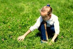 La muchacha con en la hierba coge el saltamontes Imagen de archivo