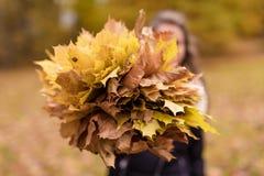 La muchacha con la cara borrosa detiene a Autumn Leaves Fondo borroso Foto de archivo