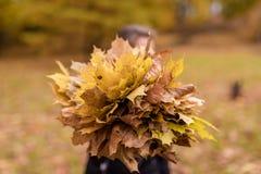 La muchacha con la cara borrosa detiene a Autumn Leaves Fondo borroso Imágenes de archivo libres de regalías