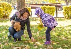 La muchacha con las bellotas de las hojas de otoño recogió de la madre en el parque Imagenes de archivo