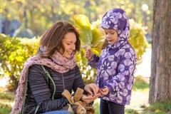 la muchacha con las hojas de otoño con su madre cree las bellotas recolectadas en el parque Foto de archivo