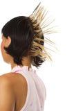 La muchacha con los hairdress Foto de archivo