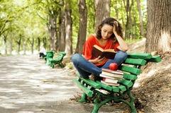 La muchacha con los libros que se sientan en un banco Imagen de archivo