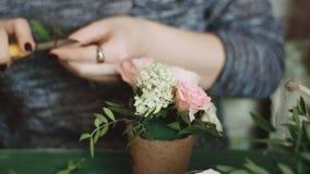 La muchacha con una manicura aseada sostiene en sus manos un pequeño pote de flores, endereza y planta suavemente un cuchillo cor almacen de video