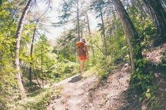 La muchacha con una mochila está caminando a través del bosque Imagen de archivo