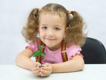 La muchacha con una planta en palmas Foto de archivo libre de regalías