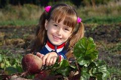 La muchacha con una remolocha Imagen de archivo libre de regalías