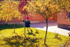 la muchacha considera las hojas amarilleadas Imagenes de archivo