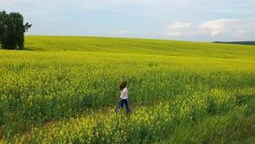 La muchacha corre en un campo de flor amarillo en la puesta del sol Cantidad del abej?n Entretenimiento al aire libre almacen de metraje de vídeo