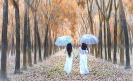La muchacha de dos vietnamitas en vestido largo tradicional o el Ao Dai va al extremo del camino en el bosque de goma Fotografía de archivo