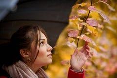 La muchacha debajo del paraguas foto de archivo libre de regalías
