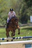 La muchacha del caballo salta al Equestrian Fotos de archivo