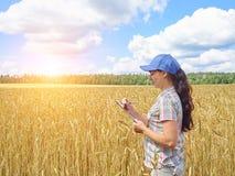La muchacha del granjero en una camisa de tela escocesa controló su trigo del campo Fotografía de archivo libre de regalías