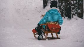 La muchacha del niño en el trineo de madera va abajo de una colina Nevado en el pino Forest Slow Motion almacen de video