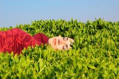 La muchacha duerme en una hierba Fotografía de archivo