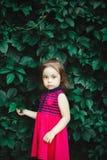 La muchacha dulce en vestido rojo hace una pausa la pared de hojas verdes Imagenes de archivo