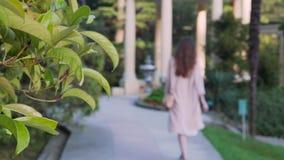 La muchacha elegante joven entra la distancia en un parque hermoso de la tarde almacen de metraje de vídeo