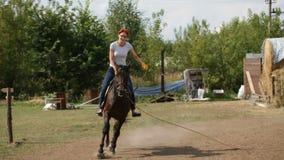 La muchacha en caballo recibe la lección del montar a caballo - deporte ecuestre, a cámara lenta metrajes