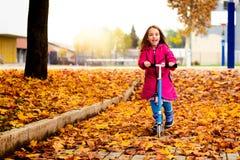La muchacha en capa rosada está montando la vespa en las hojas de arce Foto de archivo