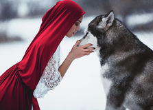 La muchacha en Caperucita Rojo del traje con el malamute del perro le gusta a Fotos de archivo libres de regalías