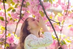 La muchacha en la cara sonriente que se coloca cerca de Sakura florece, defocused Concepto del perfume y de la fragancia El niño  fotografía de archivo libre de regalías