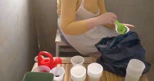 La muchacha en el delantal blanco asentó almácigos en los potes plásticos blancos cerca de ventana en casa Mujer que los riega de