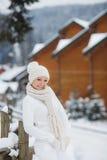 La muchacha en el fondo de un paisaje del invierno Fotos de archivo