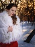 La muchacha en el parque del invierno Imagen de archivo libre de regalías