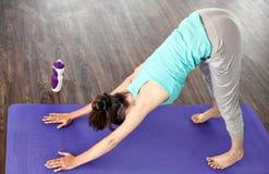 La muchacha en la actitud hacia abajo del perro Yoga en el país Imágenes de archivo libres de regalías