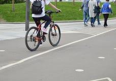 La muchacha en la bici con la mochila monta en el parque en el verano Imagenes de archivo