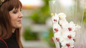 La muchacha en la floristería elige orquídeas almacen de video