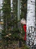 La muchacha en la madera Fotografía de archivo libre de regalías