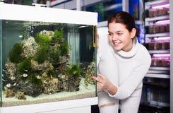 La muchacha en tienda del acuario señala a los pescados coloreados Fotos de archivo libres de regalías